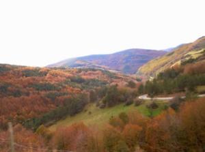 Subiendo/bajando por Abodi, Navarra