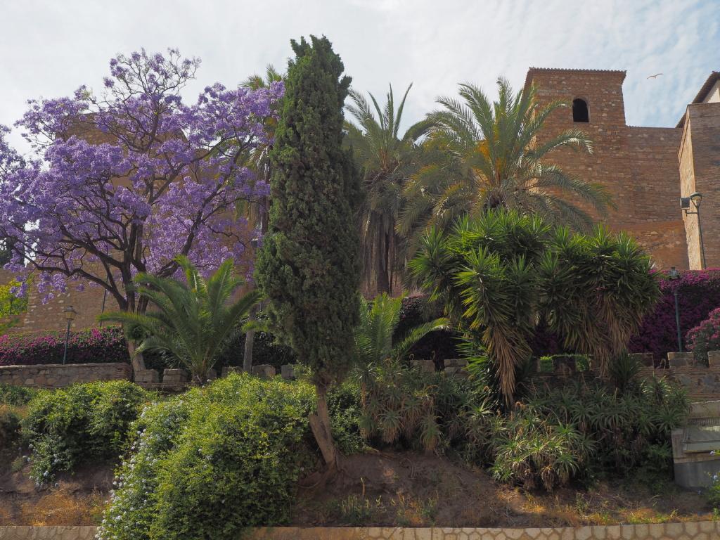 Vista de La Alcazaba, Málaga